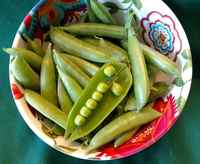 Sugar_snap_peas